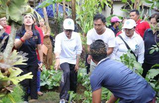 """Ny. Putri Suastini Koster: Kembalikan """"Natah"""" Rumah, Tanami Sayuran dan Tanaman Obat-obatan"""