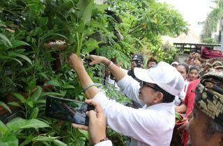 Ny. Putri Suastini Koster: Gerakan HATINYA PKK Harus Digelorakan Demi Kemajuan Bali