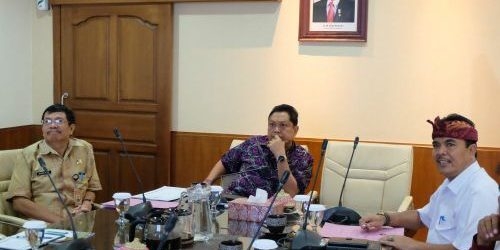 Tahun 2017 dan 2018, Kota Denpasar Dinyatakan Nihil Kasus Rabies