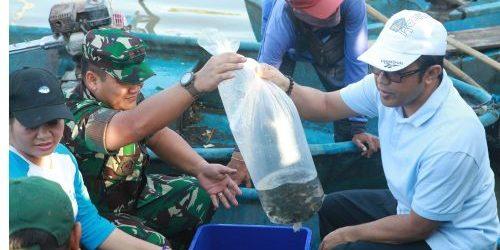 2.020 Ekor Ikan Nila dan Koi Ditebar di Tukad Badung