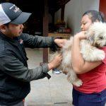 Cegah Kasus Rabies Sejak Dini, Distan Kota Denpasar Kembali Lakukan Vaksinasi