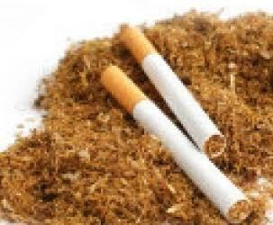 Lindungi Masyarakat dari Aspek Kesehatan, Pemerintah Harus Perjelas Regulasi Produk Tembakau Alternatif