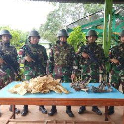 Satgas Pamtas RI-PNG Yonif 411Kostrad Amankan Gelembung Ikan dan Tanduk Rusa Ilegal