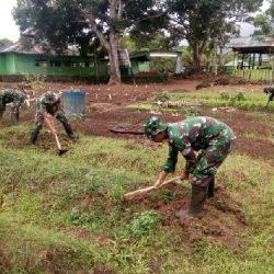 Manfaatkan Lahan Kosong, Prajurit TNI di Perbatasan Tanam Aneka Macam Sayuran