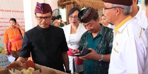 Sekda Dewa Indra Tekankan Pemerintah Daerah Tingkatkan Ekspor