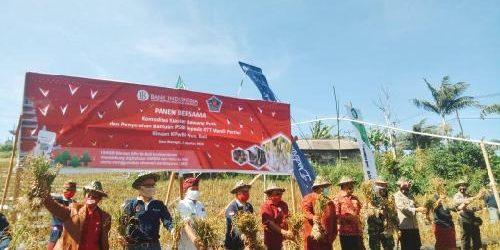 """BI dan Rai Wirajaya Panen Perdana Bawang Putih, KPw BI Bali: """"Jadi komoditas pangan strategis terhadap stabilitas harga"""""""