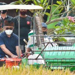 Perkuat Eksistensi Subak, Paket Jaya-Wibawa Berdayakan Pertanian Berbasis Pariwisata