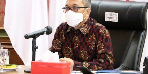 Cabai Rawit dan Daging Ayam Ras Penyumbang Utama Inflasi di Bulan Maret 2021