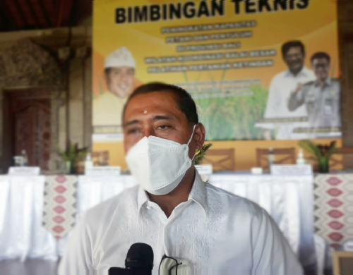 """Rencana Impor Beras, Anggota Komisi IV DPR: """"Jangan buru-buru panik"""""""