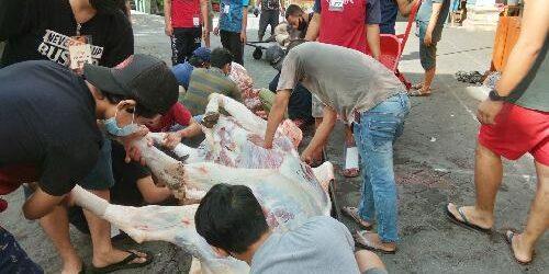 Idul Adha 1442 H, LDII Bali Kirim 12 Ribu Kantong Daging Qurban ke Umat Lintas Agama