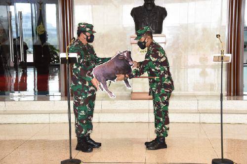 Panglima TNI Serahkan Simbolis Hewan Qurban, Ada 28 Ekor Sapi dan Kambing yang akan Disembelih